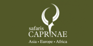Caprinae Travel | Safaris